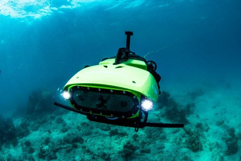 Австралийские ученые засеяли первые коралловые рифы при помощи робота LarvalBot
