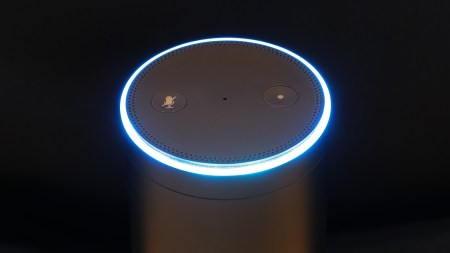 Стив Рабучин: «Amazon делает бычью ставку на Alexa»