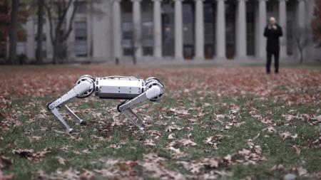Четвероногий робот из MIT освоил обратное сальто