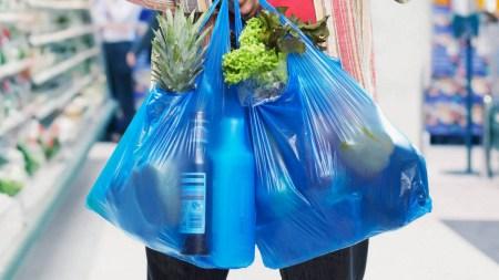 В Верховной Раде предлагают запретить в Украине тонкие пластиковые и оксо-биоразлагаемые пакеты с 1 января 2022 года