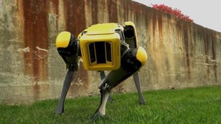 Полиция Массачусетса тайком использовала робота-собаку Spot от Boston Dynamics - ITC.ua