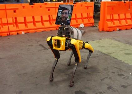 Четвероногий робот Boston Dynamics Spot помогает удалённо обследовать пациентов, подозреваемых на наличие COVID-19