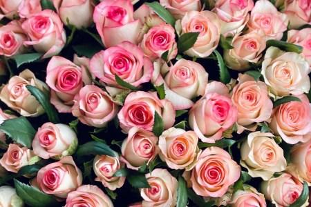 Доставка квітів UFL: чому з нами зручно?