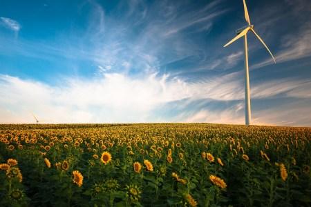 Держенергоефективності оприлюднило статистику розвитку відновлюваної електроенергетики за I півріччя 2021 року — загальна потужність збільшилась на 8,3% або 709 МВт