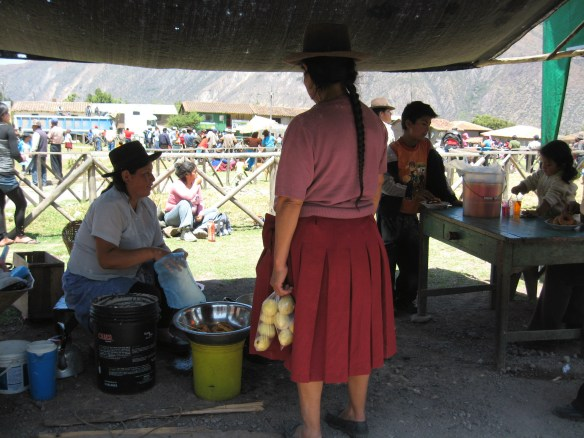 Rest stop in the Andes, Peru