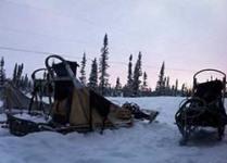 photos-sled-sunset-th