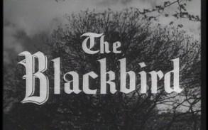 RobinHood_The Blackbird Title Shot