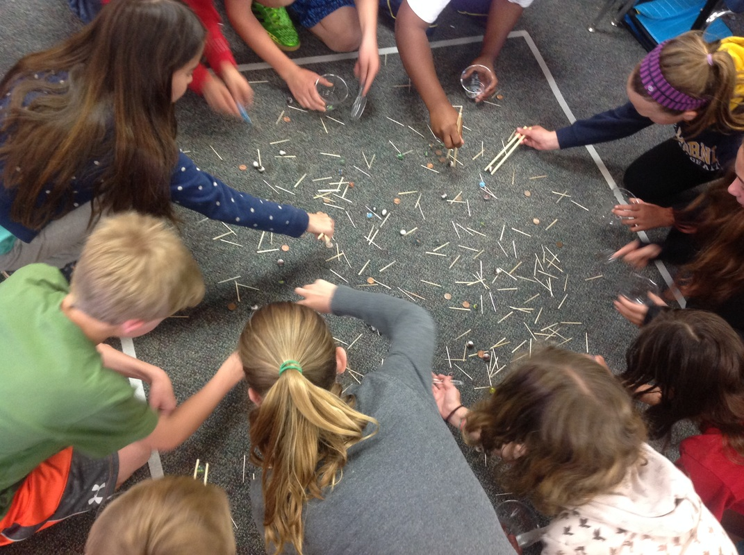 Birds Beaks And Nests Earth Science