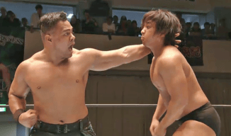 Wrestle Kingdom 13: The Striker vs  The Grappler