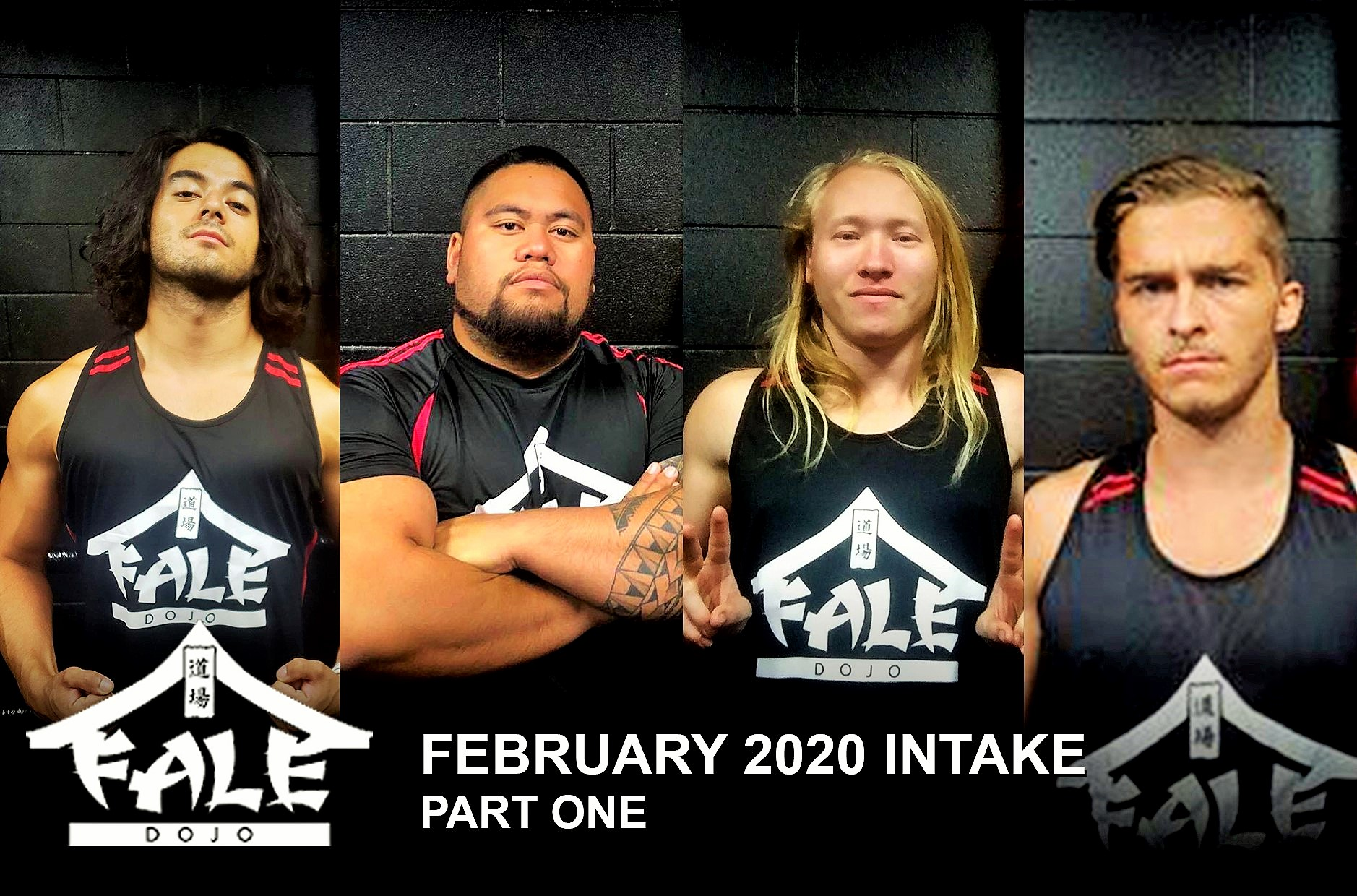 Fale Dojo 2020 February Intake – Part One