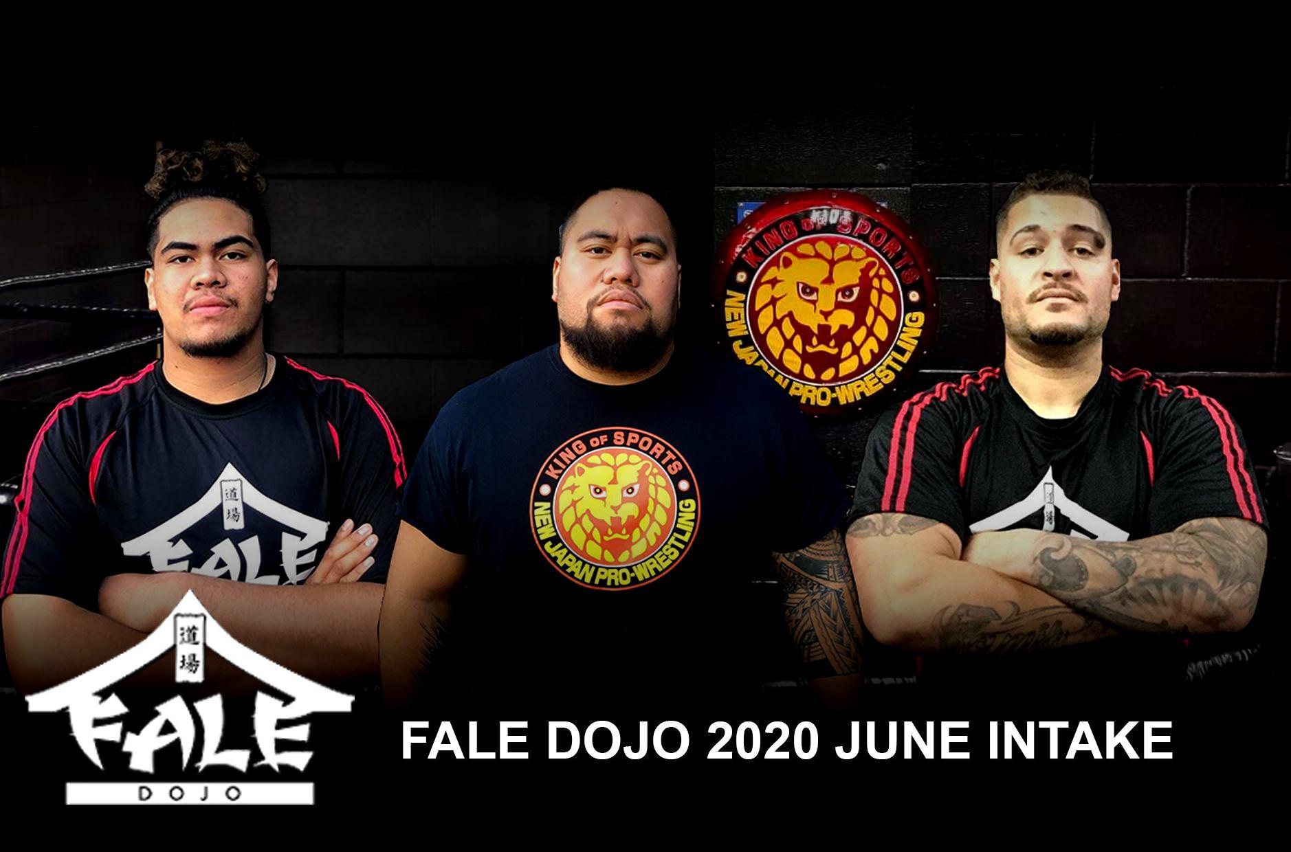 Fale Dojo 2020 June Intake