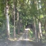 【施設紹介】共同村ひだまりファームキャンプ場