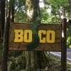 【施設紹介】BOSCOキャンプ場がおすすめな5つの理由