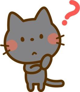 黒猫・疑問