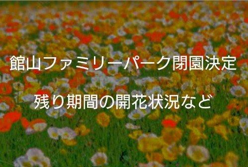 館山ファミリーパーク閉園の理由と時期・5月末閉園最後のイベントを紹介します!