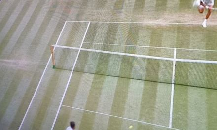 Medvedev's serve overrule and argument with umpire. Was he right? I did the math.