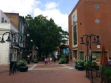 Charlottesville-VA-downtown-IthacaBuilds-08091426