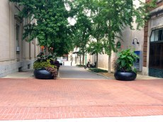 Charlottesville-VA-downtown-IthacaBuilds-08091432
