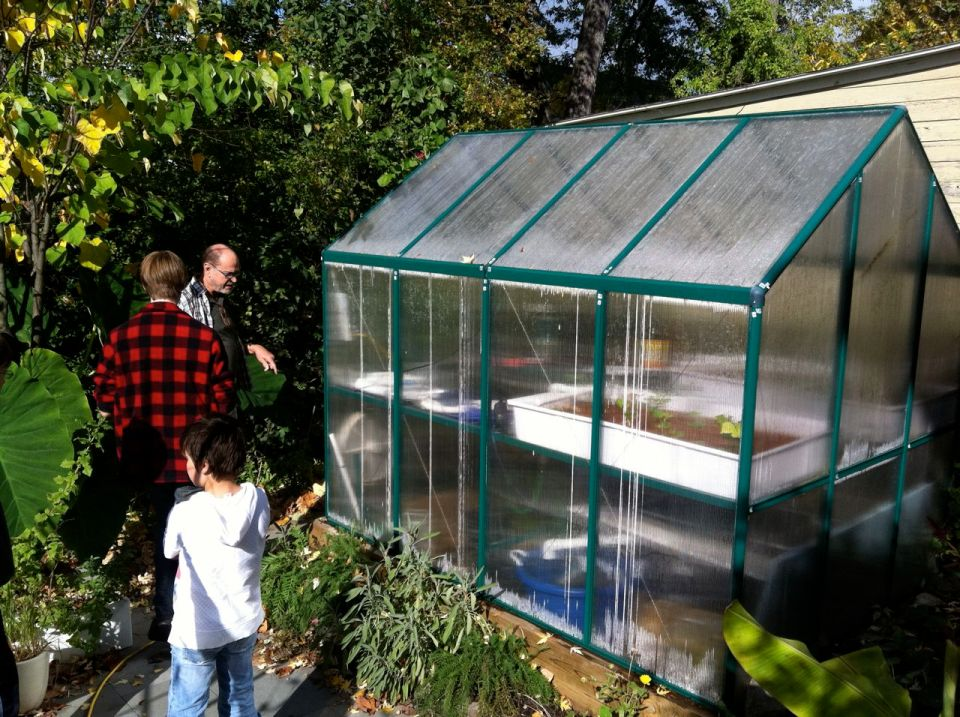 Aquaponics greenhouse.