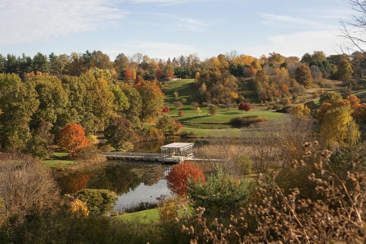 The F.R. Newman Arboretum in fall.