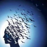 Mindfulness-Meditation-Freshness-Of-Experience-300x300