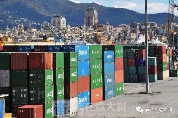 """中国猫咪藏在集装箱中35天 漂洋过海""""偷渡""""到意大利"""