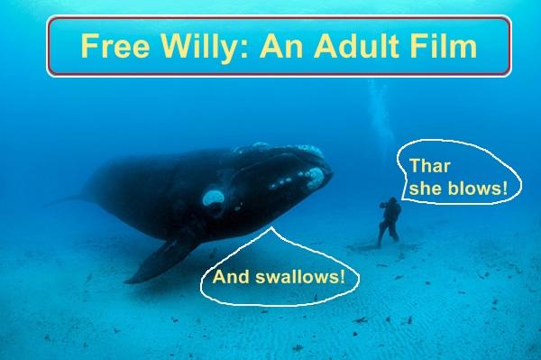 whale porn