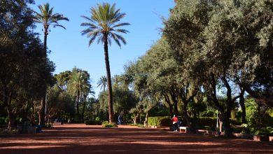 Photo de Maroc : témoignages d'handivoyageurs