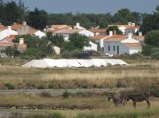 IL-Ile Noirmoutier - village -