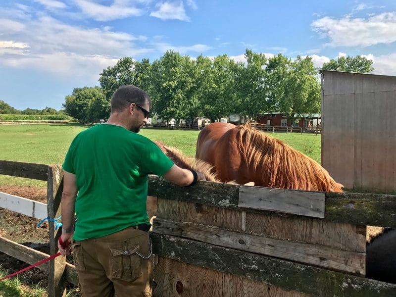 John and horses