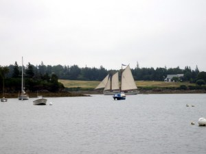 Windjammer Leaving Pulpit Harbor