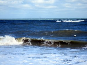 Surf At Vero Breach