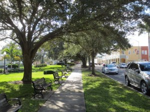 Tree Lined Street - Vero Beach
