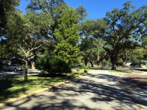 Tree Lined Streets in Downtown Southport