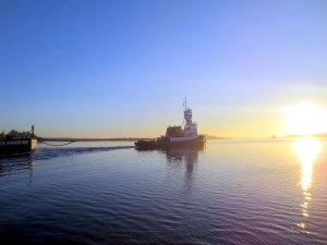 Tug in the Winyah Bay
