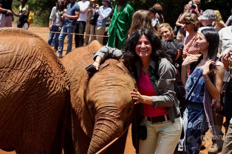 a girl hugging a baby elephant at the David Sheldrick Wildlife Trust