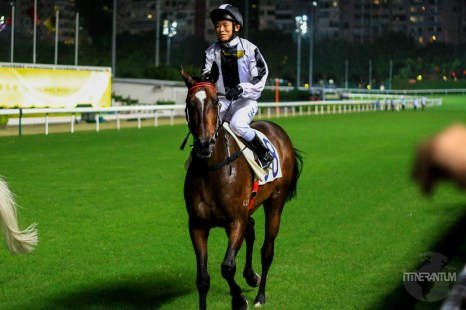 Jockey on his horse at Hong Kong horse track