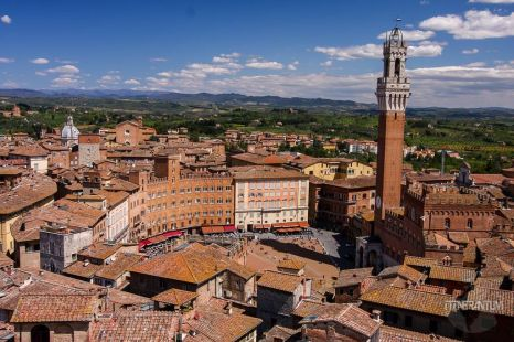 Panoramic view over Piazza del Campo Siena