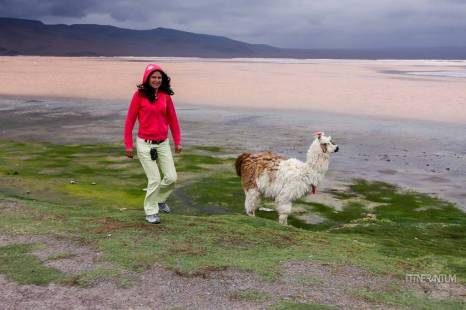 salar-de-uyuni-bolivia (54)