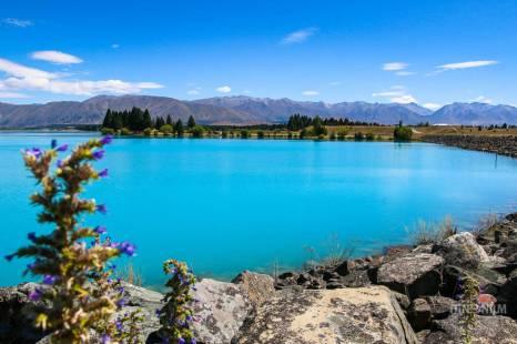 lake-pukaki-new-zealand
