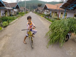 Street at Blawan village, close to Catimor Homestay, Ijen
