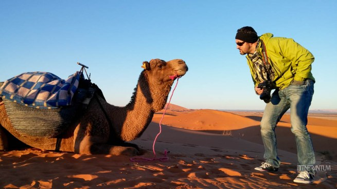riding a camel in sahara desert tour, morocco itinerary