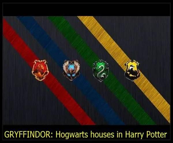 Hogwarts houses in Harry Potter