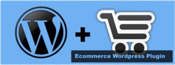 wordpress plugin installation services