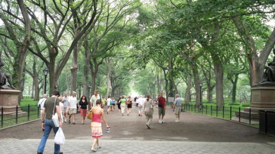 Central Park's promenade