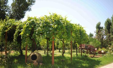 Πολυλειτουργικά Αγροκτήματα από τον Έβρο μέχρι την Κρήτη