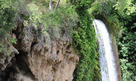Σώστε τον Εδεσσαίο Ποταμό και τους Καταρράκτες της Έδεσσας. Στοπ στο έργο καταστροφής της Έδεσσας. Όχι στην ασχήμια, όχι στα τσιμέντα, Όχι στην κοπή δέντρων.