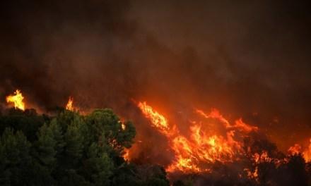 Φωτιά στη Βαρυμπόμπη : Το μέγεθος της καταστροφής σε εικόνες
