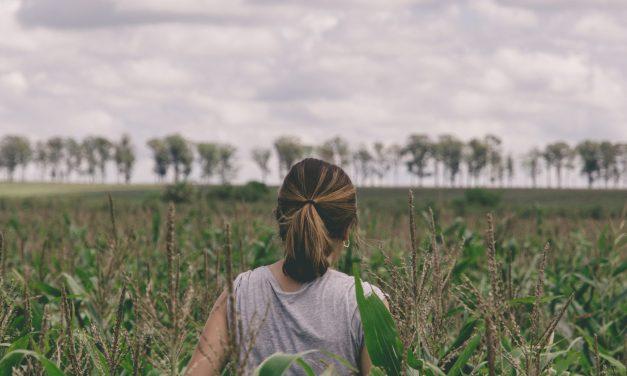 Τουρισμός υπαίθρου – αγροτουρισμός : Η απάντηση στην υγειονομική και περιβαλλοντική κρίση
