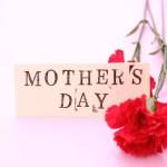 「母の日」の気持ちは伝えたい!まだ間に合う『LOHACO(ロハコ)』のギフトは最短で当日配送